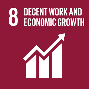 08. Decent Work and Economic Growth
