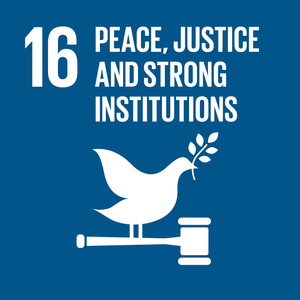 16. Peace Justice and Strong Institutions